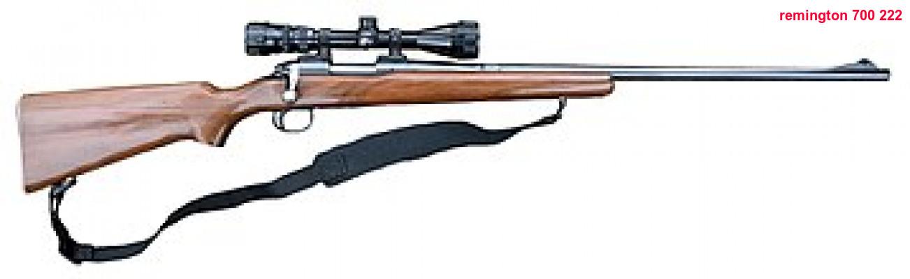Remington armes à feu datant